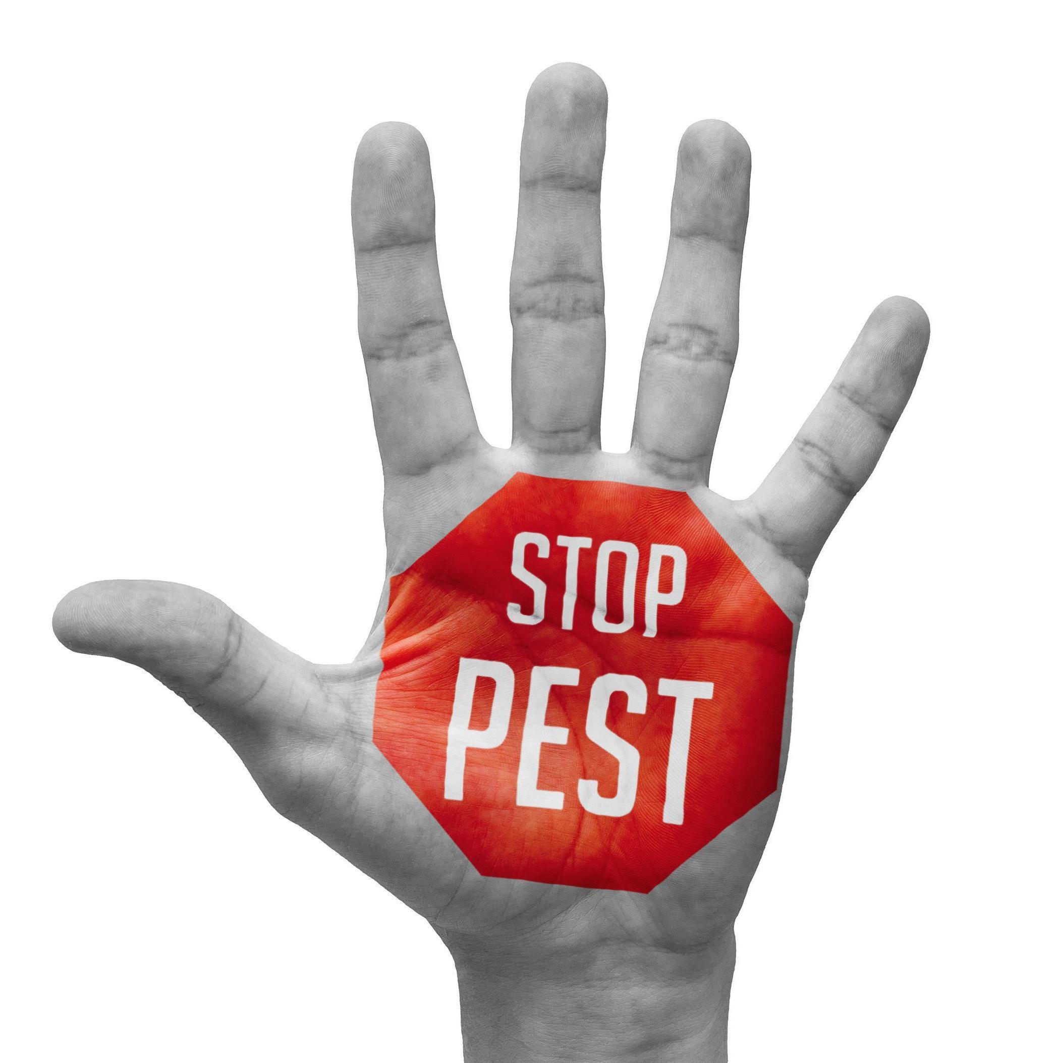 Universal Pest & Termite image 10