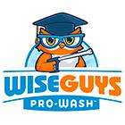 WiseGuys Pro-Wash