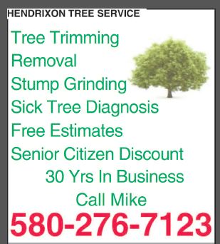 Hendrixson Tree Service image 0