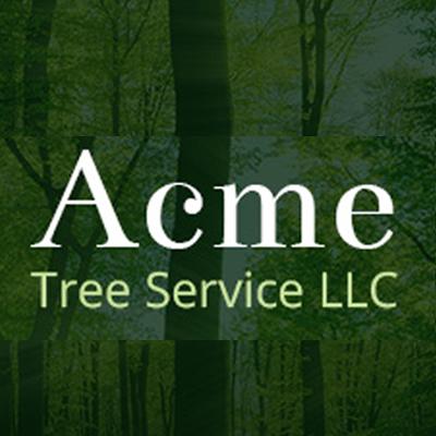 Acme tree service llc in kalamazoo mi 49048 citysearch for Acme salon san francisco