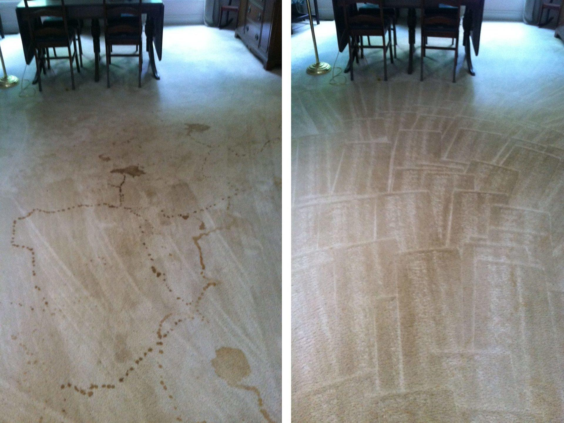 Mullins Carpet Cleaning Inc image 1