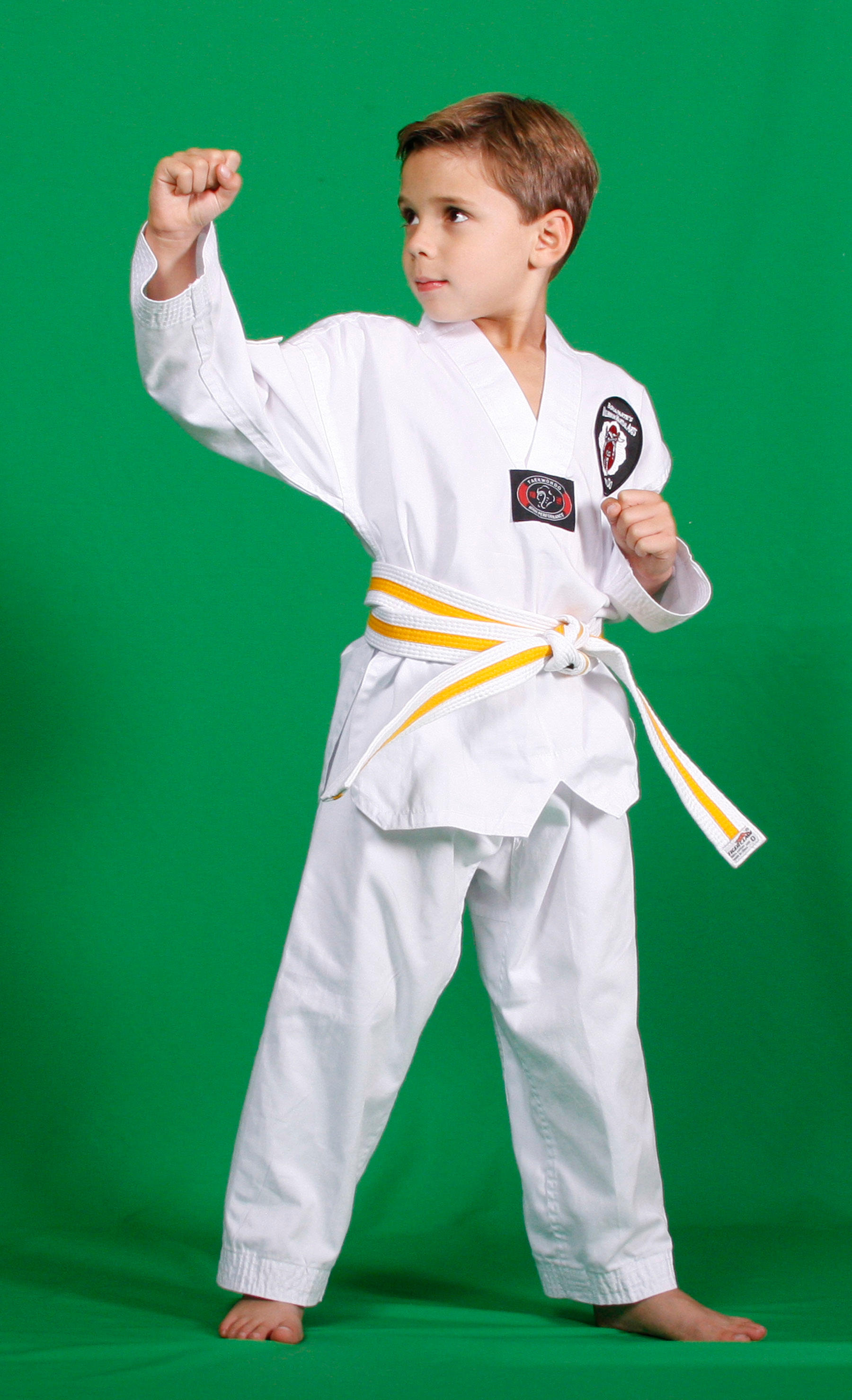 Millennium Martial Arts - Tae Kwon Do image 1