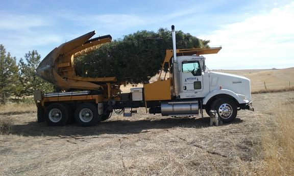Bowman Tree Moving, Inc.