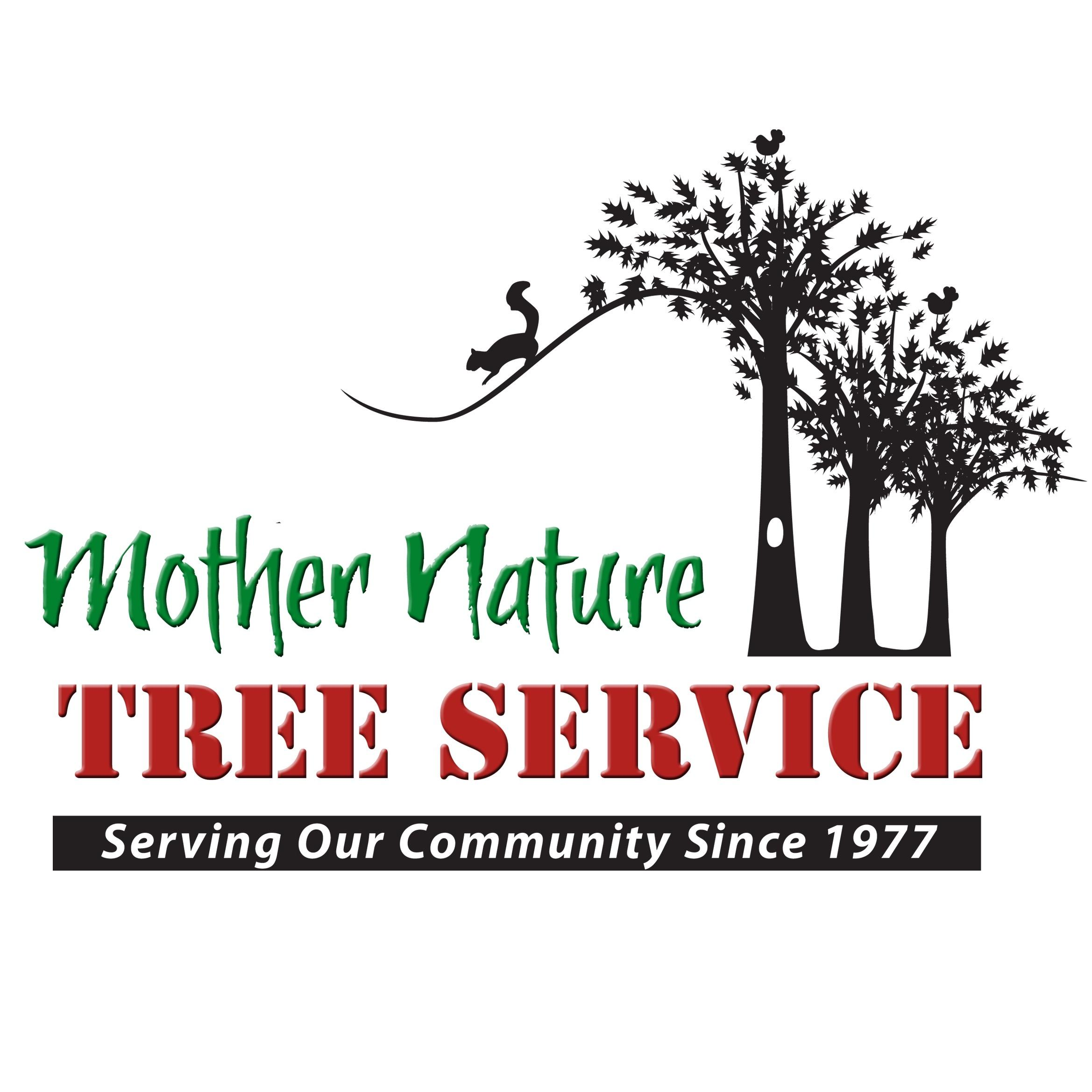 Mother Nature Tree Service image 0