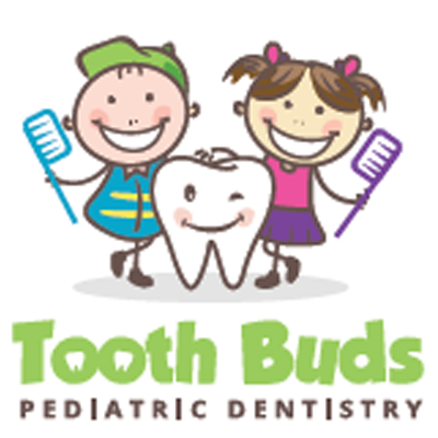 Tooth Buds Pediatric Dentistry