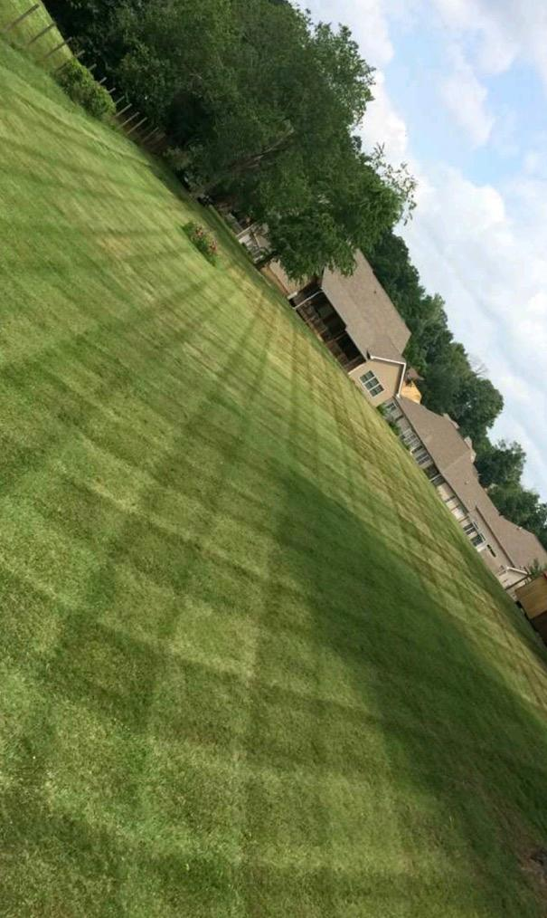 Campbell's Lawn Care & Landscaping LLC image 0