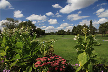 Club De Golf Glendale à Mirabel