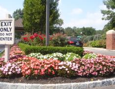 Commercial Asphalt Paving | Meadowbrook Parking Area Contractors image 10