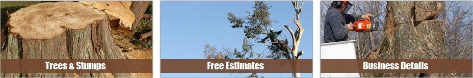 Kottman's Tree Services image 1