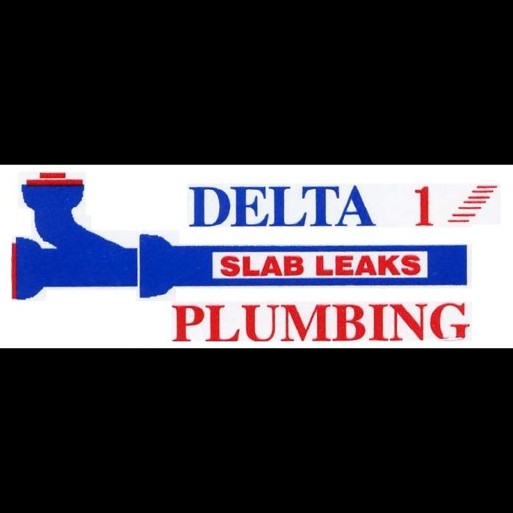 Delta 1 Plumbing image 1