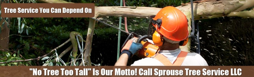 Sprouse's Tree Service LLC image 8