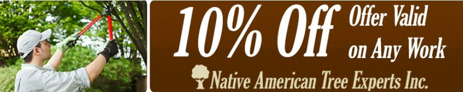 Native American Tree Experts Inc.