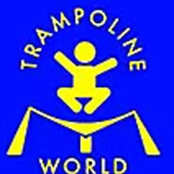 Trampoline World Sales & Repairs, LLC