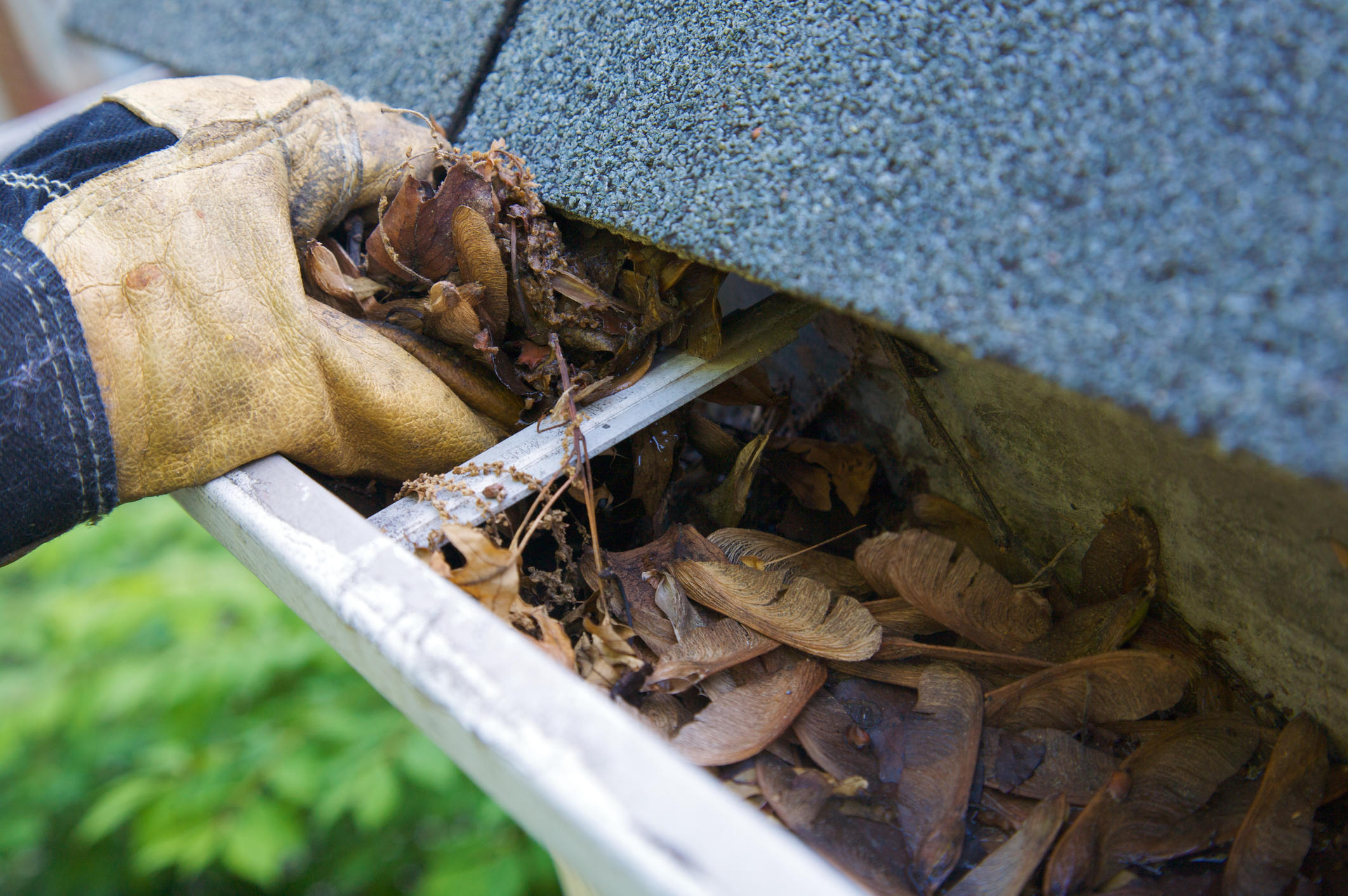 Gutter Services of New Jersey, Corp.