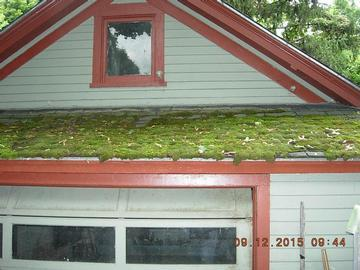 Superior Quality Home Inspections image 11