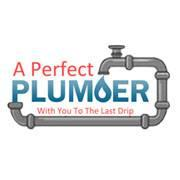 A Perfect Plumber image 13