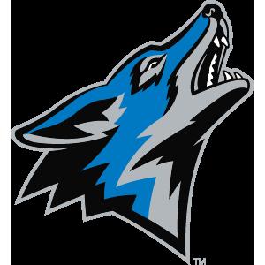 Coyote Autos image 0