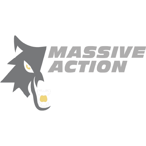 Massive Action Training image 7