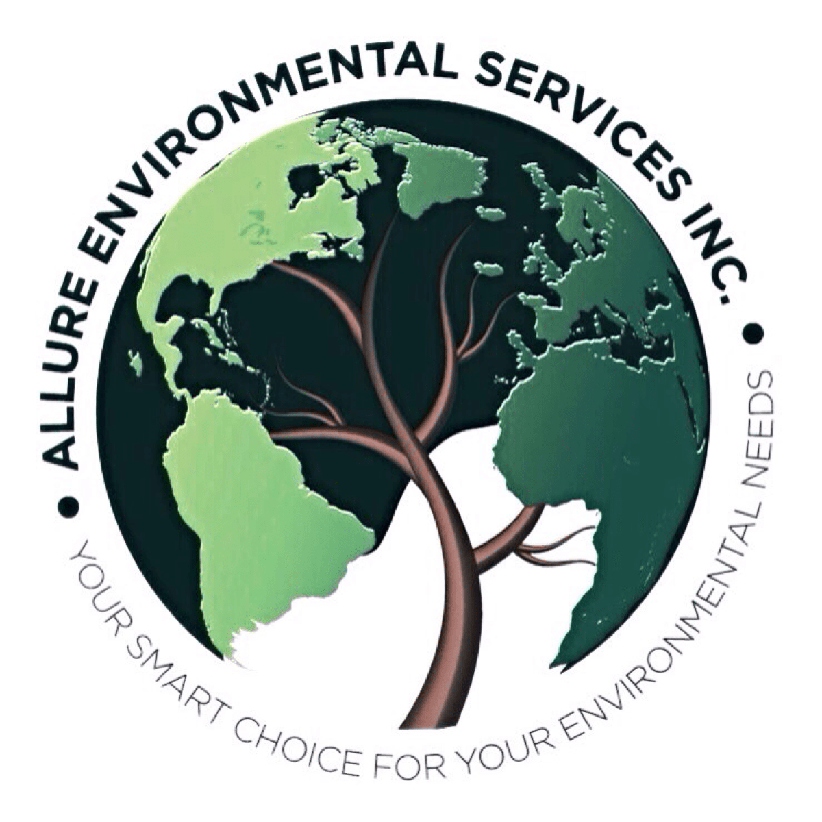 Allure Environmental Services Inc