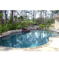 Precision Pools & Spas image 49