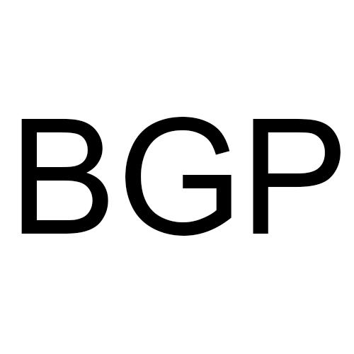 Black Gold Paving LLC