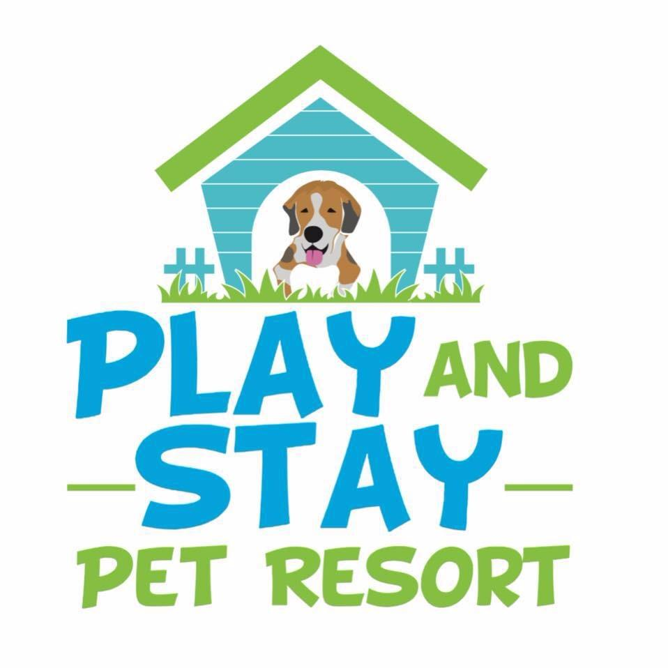 Play and Stay Pet Resort