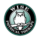 Wise Physical Therapy