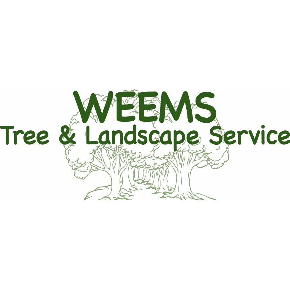 Weems tree landscape service in tyler tx 903 597 2 for Tree and garden services