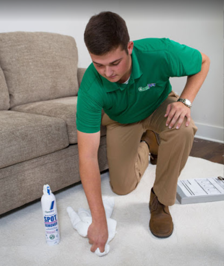 Our technicians are equipped to handle carpet stains of all kinds including throw up, ink, juice, mud, and more!