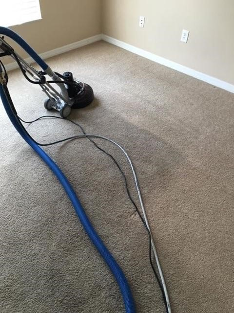 Divine Care Carpet Cleaning, Inc. image 6