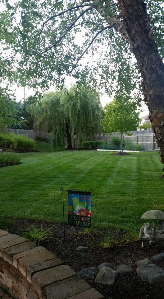 Adams Landscape Management Inc image 4