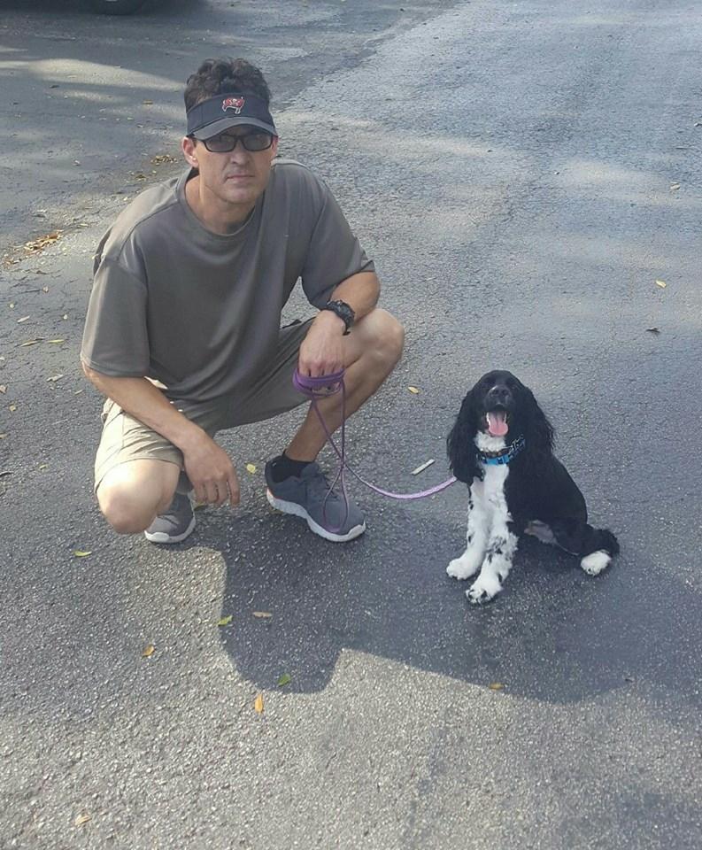The Dog Man - Pro Dog Training image 8