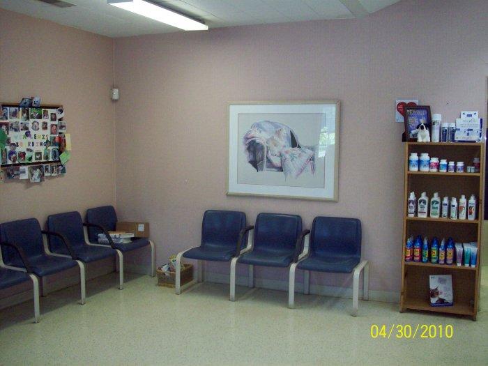 VCA Lewis Animal Hospital image 6