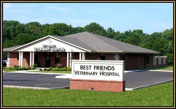 Best Friends Veterinary Hospital image 0