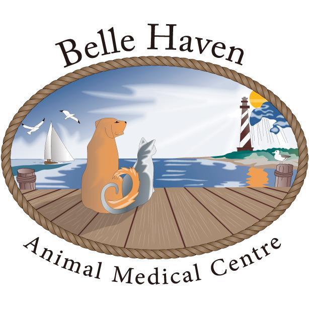 Belle Haven Animal Medical Centre