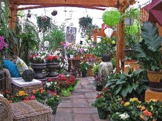 Centre Floral Hollandia à Vaudreuil-Dorion