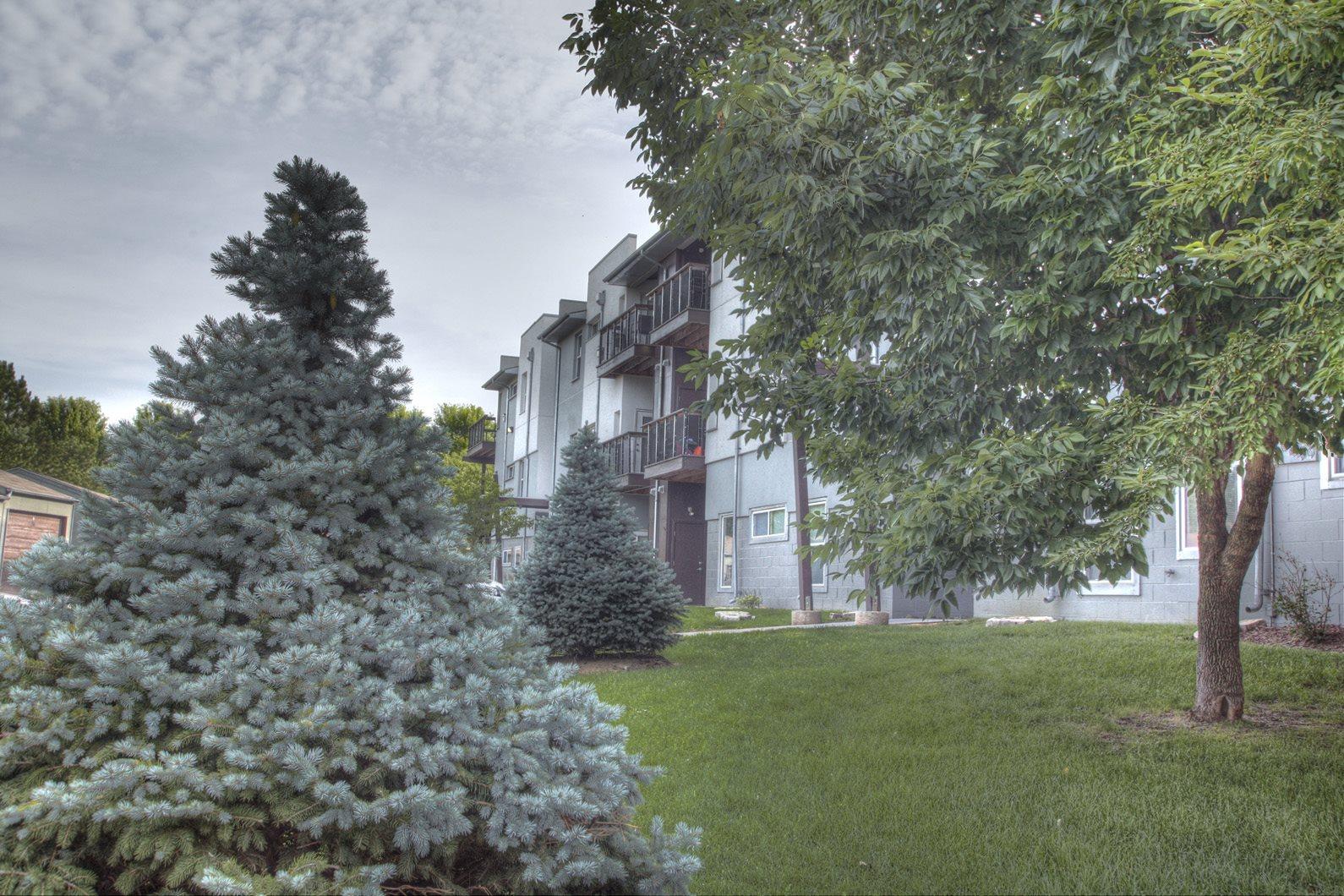 Briar Hills image 8