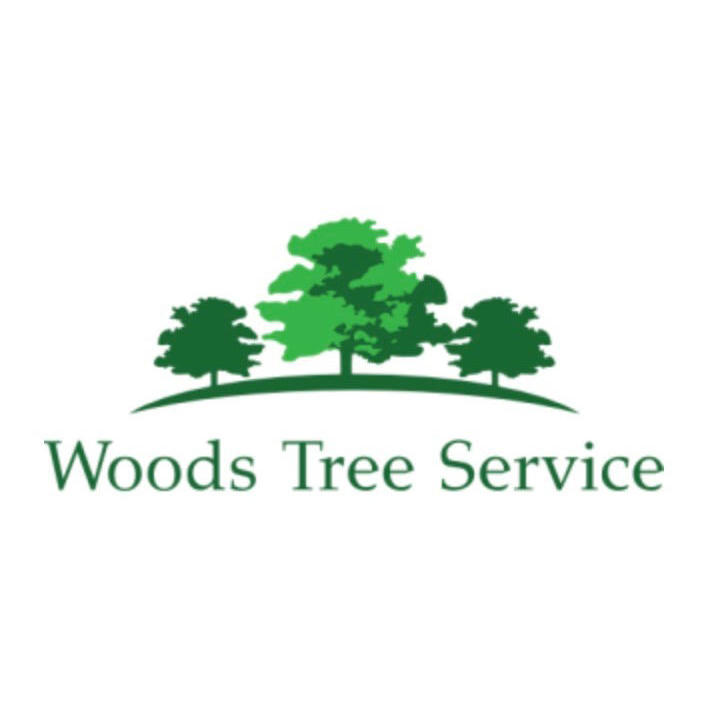 Woods Tree Service image 0