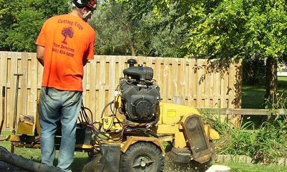 Arbor Master image 5