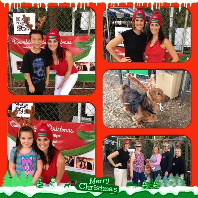 Dave's Christmas Tree Lot image 33
