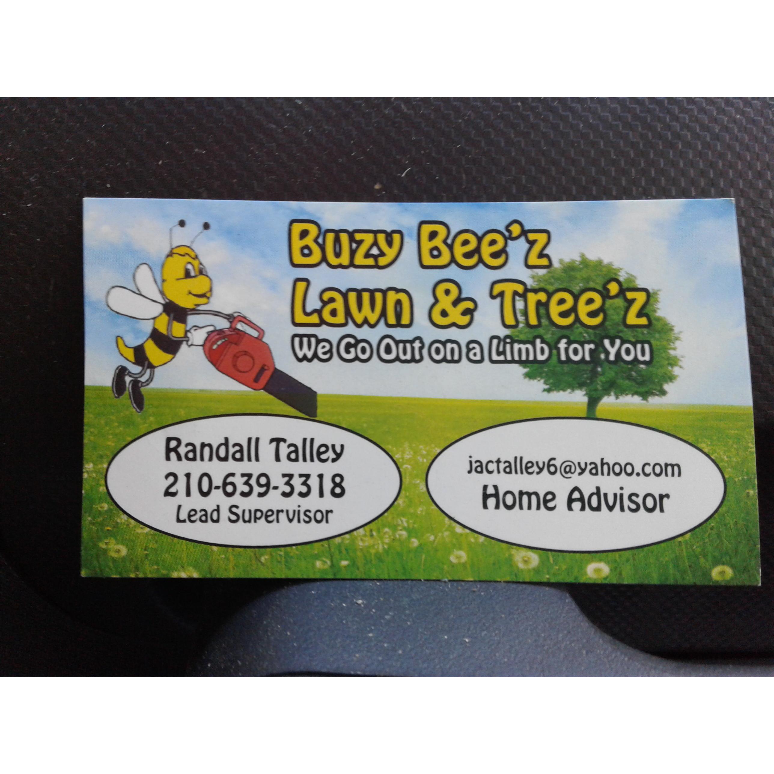 Buzy Beez Lawn & Treez