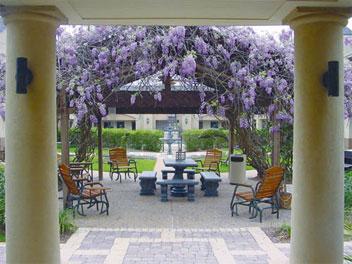 Vineyard Court Designer Suites image 0