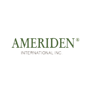 Ameriden International Inc. image 0