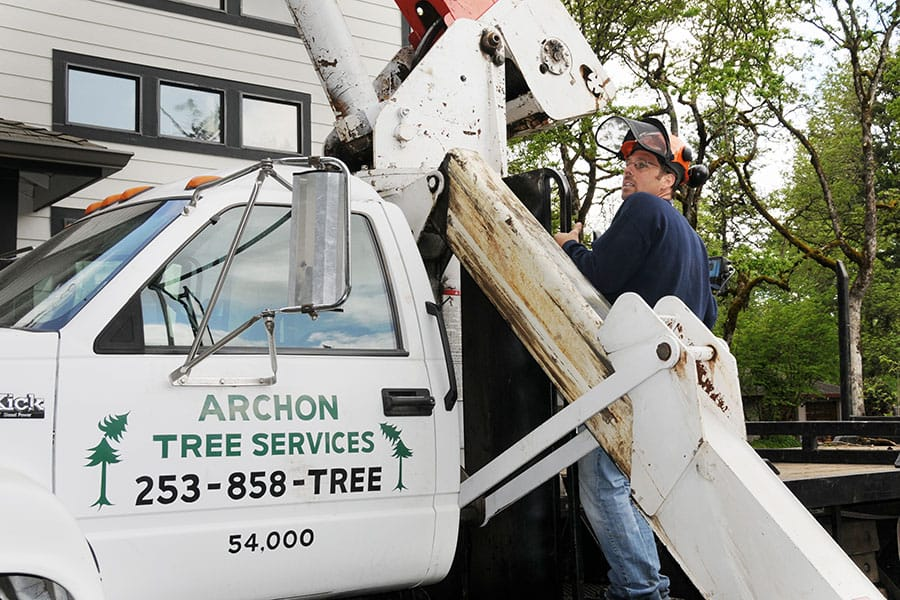 Archon Tree Services, Inc. image 22