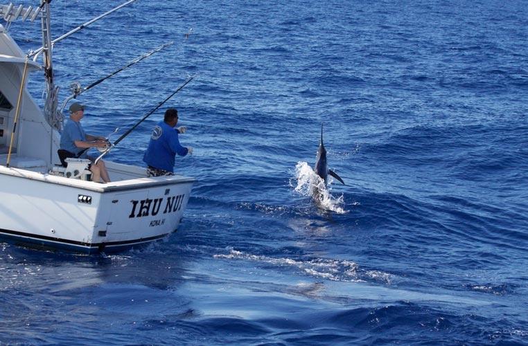 Ihu Nui Kona Sportfishing image 5