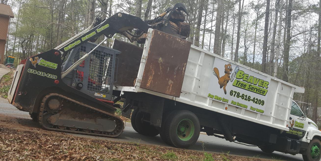 Beaver Tree Service Inc image 10