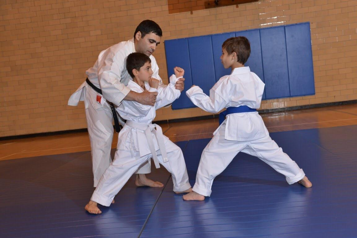 Shotokan Karate Studio LLC image 0