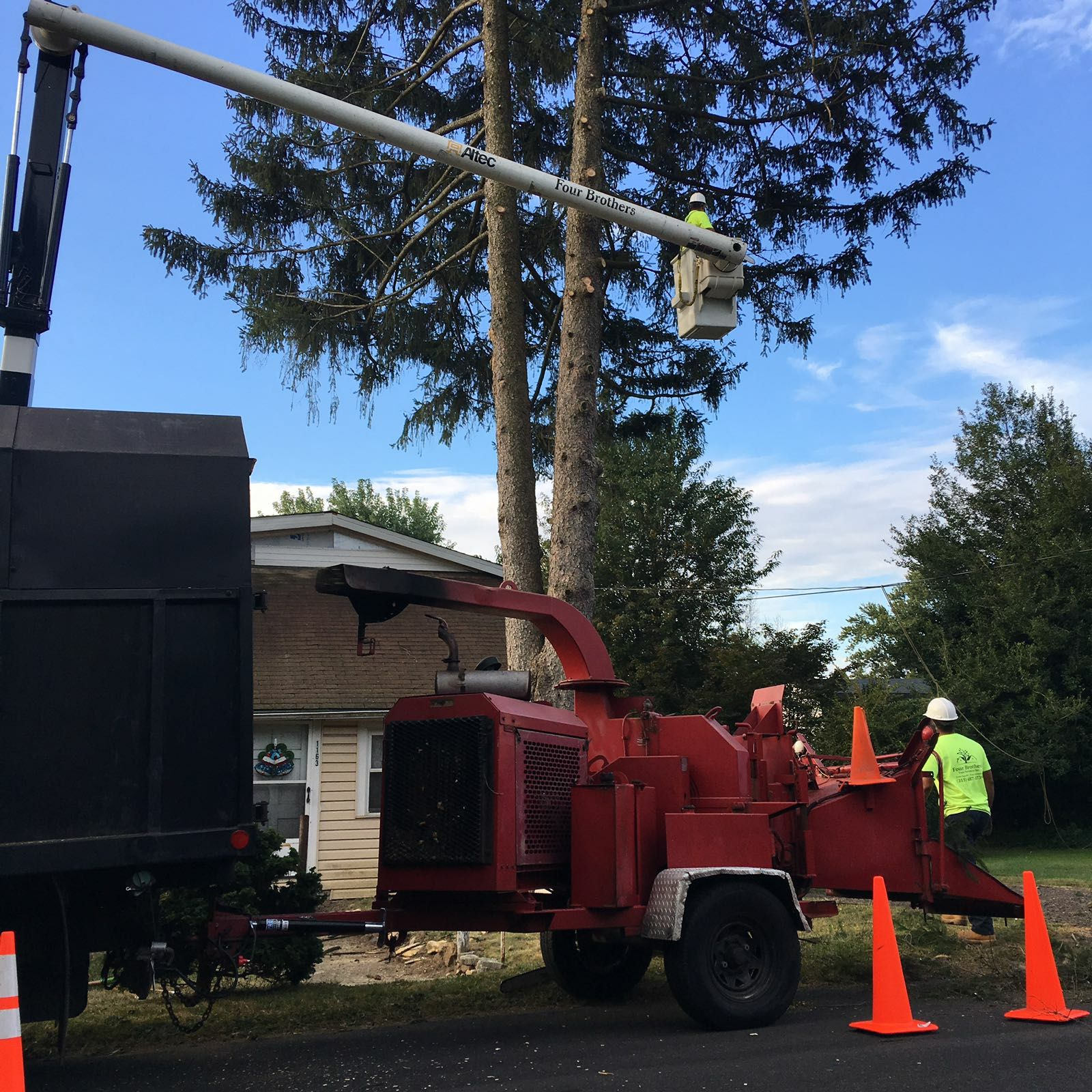 Four Brothers Tree Service Inc. image 33
