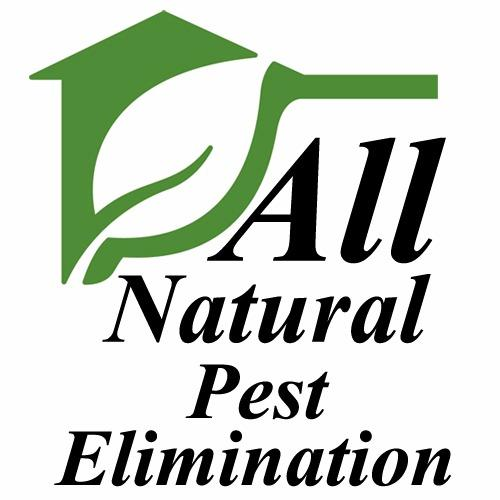 All Natural Pest Elimination - Springfield, OR