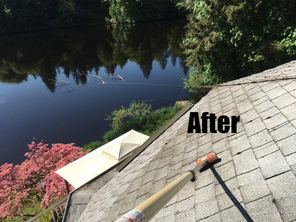 Window and Gutter Cleaning Ninjas LLC image 0
